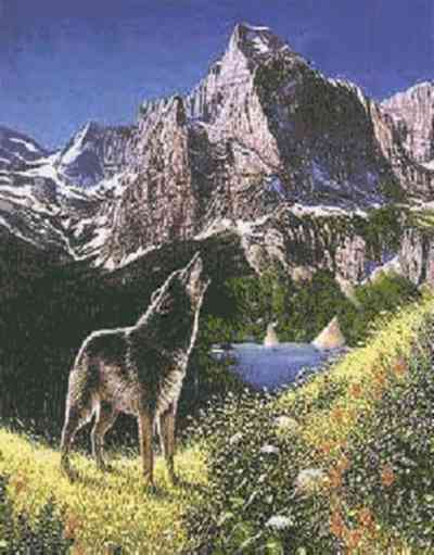 cinq loups